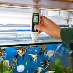 Uso del misuratore di ossigeno disciolto