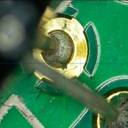 Immagine catturata con il microscopio